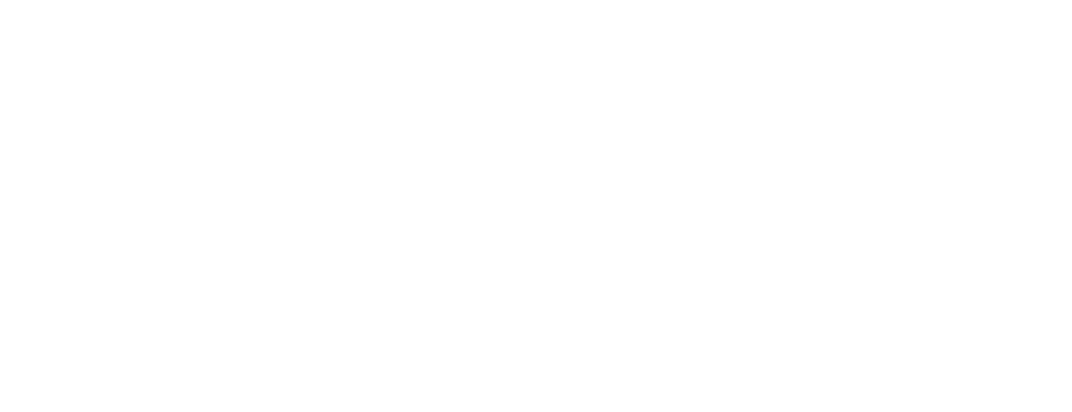 st act logo